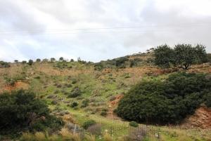 Земельный участок 6200 m² на Крите