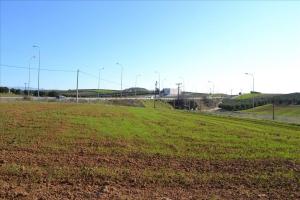 Земельный участок 9000 m² в Халкидиках