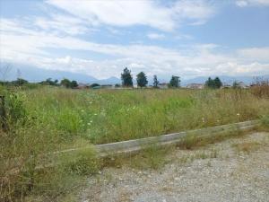 Земельный участок 3250 m² на Олимпийской Ривьере