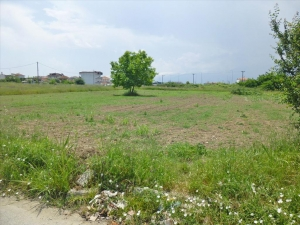 Земельный участок 4100 m² на Олимпийской Ривьере