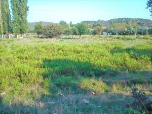 Земельный участок 3200 m² на Ситонии (Халкидики)