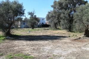 Земельный участок 550 m² в Аспровальте