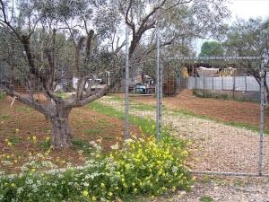 Земельный участок 1200 m² Эвия