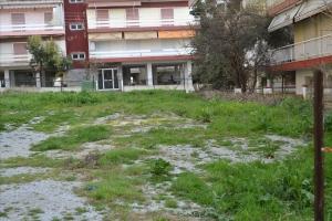Земельный участок 310 m² на Кассандре (Халкидики)