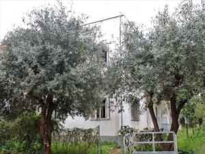 Коттедж 146 m² в Афинах