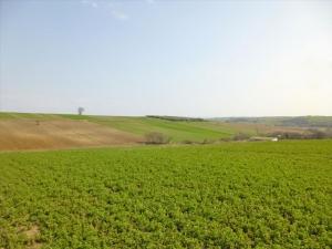 Земельный участок 12000 m² на Олимпийской Ривьере