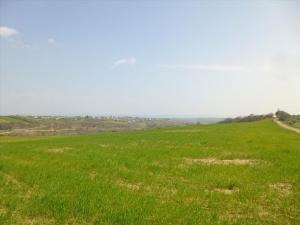 Земельный участок 11800 m² на Олимпийской Ривьере