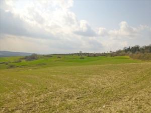 Земельный участок 8000 m² на Олимпийской Ривьере