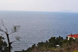 Земельный участок 4200 m² на Кассандре (Халкидики)