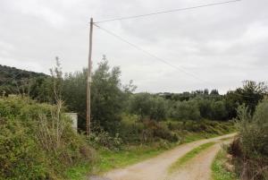Земельный участок 29000 m² на Крите