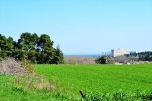 Земельный участок 10800 m² на Кассандре (Халкидики)
