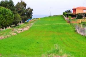 Земельный участок 3050 m² на Кассандре (Халкидики)
