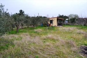 Земельный участок 960 m² в Халкидиках