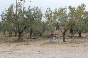 Земельный участок 6200 m² в пригороде Салоник