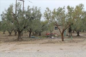 Земельный участок 278 m² в пригороде Салоник