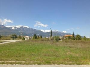 Земельный участок 600 m² на Олимпийской Ривьере