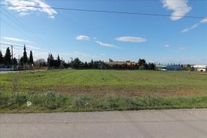 Земельный участок 4005 m² в Салониках